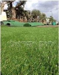 דשא סינטטי ירוק ישראלי