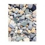 אבנים לגינה ירוק ישראלי