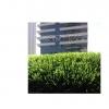 """דשא סינטטי דגם """"ירוק ישראלי"""""""