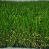 כיצד תדעו איזה דשא סינטטי לבחור ?