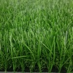 דשא סינטטי למון גראס החדש