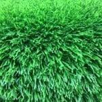 דשא סיליקון