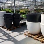 כדים גדולים לגינה ירוק ישראלי