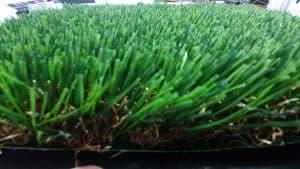 דשא סינטטי מסוג הוואי